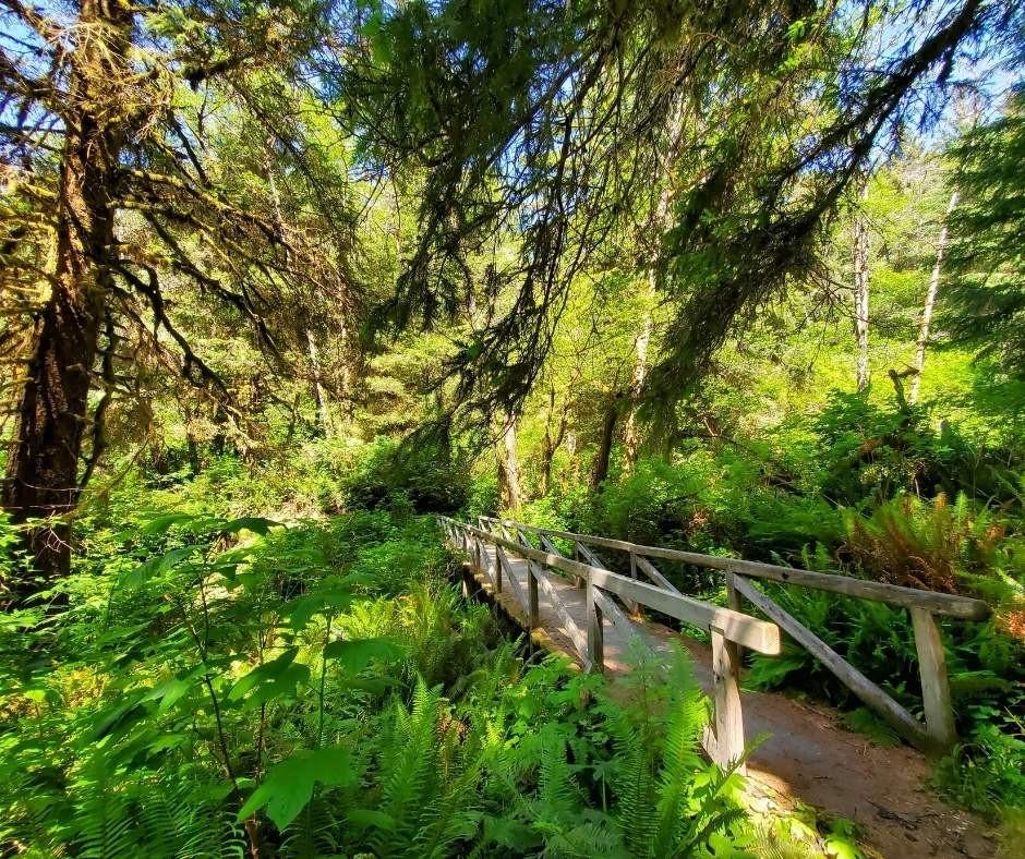 Ossagon Trail